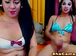 Two Couple Shemale Loves Intimate A...