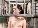 Chained brunette double penetration banged