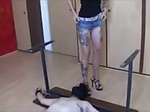 Skinny Mistress shitting on a slave...