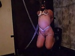 dangling slave Milou gets the whip My Slave girl Milou tied to the ceiling and flogged all over her body with the whip ...